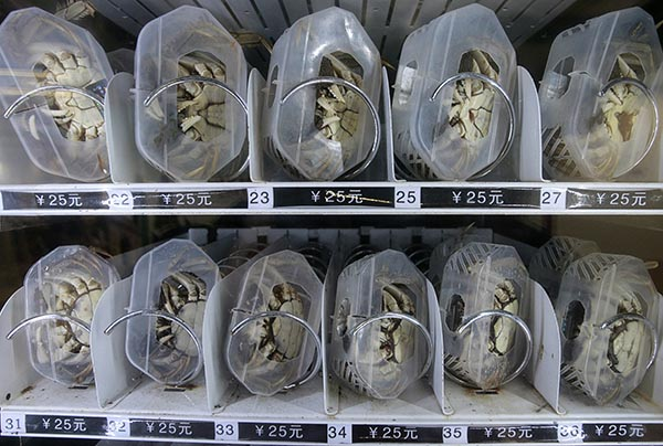 Live Crab Vending Machines debut in China's Zhehiang province